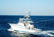 Talking Fish - Captain Randy Wilson