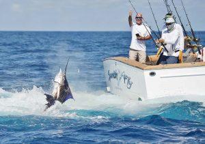 catching billfish costa rica