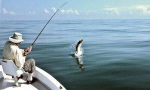 eddie brown tortuguero tarpon fishing