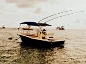 fish hunter herradura bay