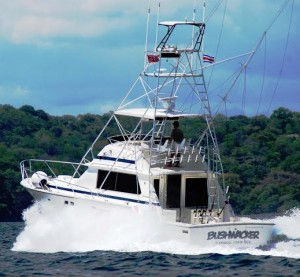 Flamingo fishing Charter a fishing boat for a half day or a full day in Sportfishing capital Flamingo