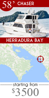 Herradura high end fishing trips