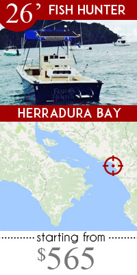 Herradura fishing charters for costa rica fishing