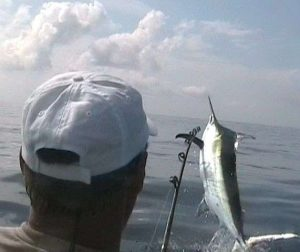 Marlin fishing with Bobby McGuinness out of Golfito Costa Rica