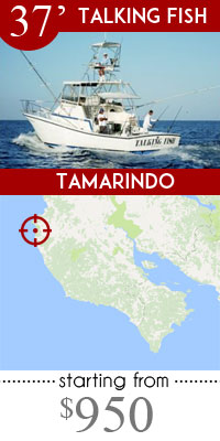 Costa rica fishing at its best top charters local for Tamarindo costa rica fishing