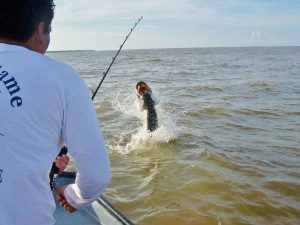 Tarpon fishing at its best, Battle the Silver King at Rio Indio Lodge