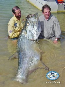 World record 286lb, nine-ounce Tarpon